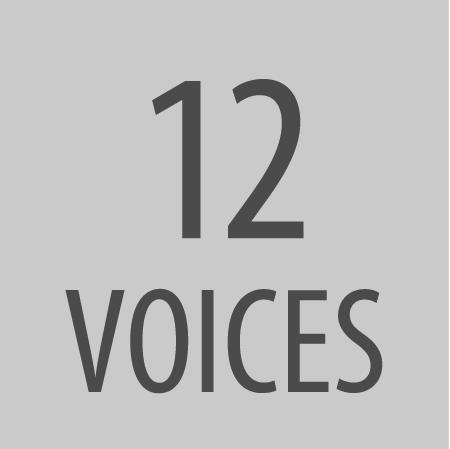 12 Voices.jpg