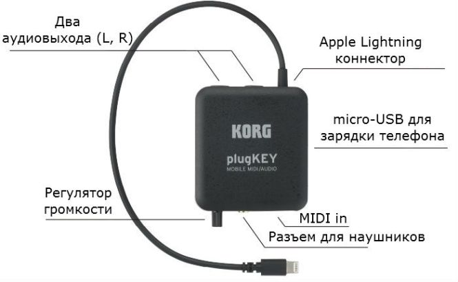 korg-plugkey